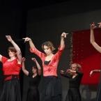 zima-2012-flamencon