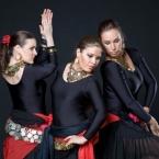 flamenco-oriental-trojica_n1